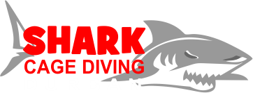 Shark Cage Diving, Durban Aliwal Shoal KZN